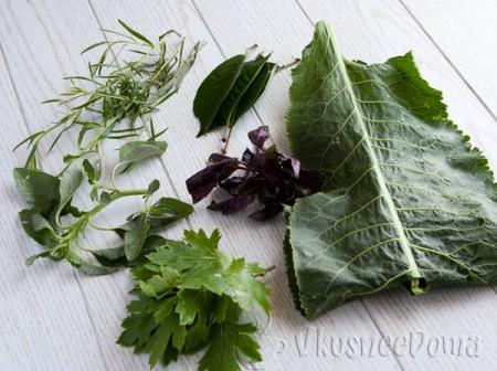 травы и специи для консервации