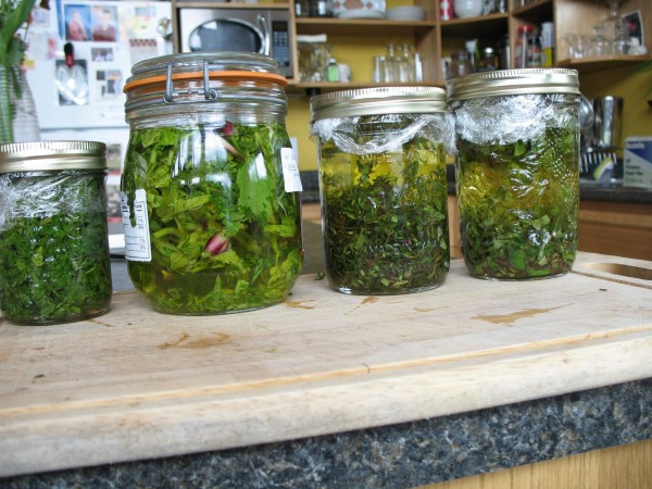 May 26 - herbal oil & vinegars (3)