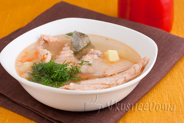 суп из кижуча рецепт с фото