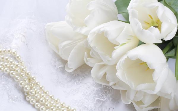 ТОП 10 самых красивых цветов в мире ( фото цветков )