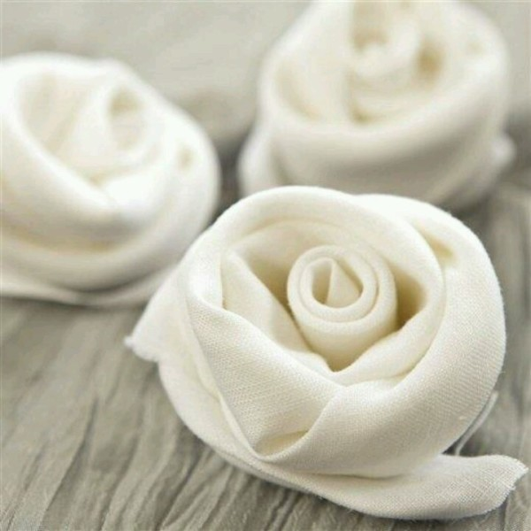rose-napkin-folding01